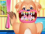 Puppy Dental Care