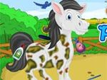 Play Pet Horse Care