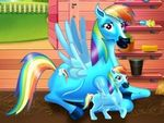 Rainbow Dash and the Newborn Baby