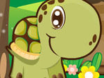 Play Baby Turtle Adventures
