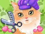 Kitty Groomer